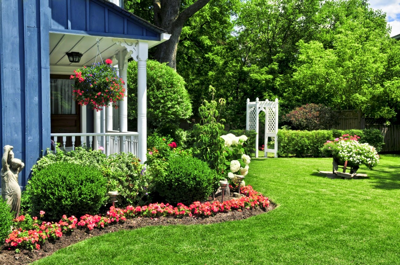 10 Ways To Keep Your Garden Beautiful And Healthy