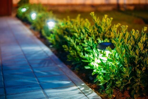 Solar Landscape Lighting Ideas
