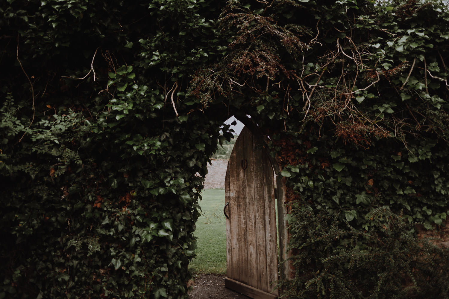 How to Create an Enchanted and Mysterious Garden?