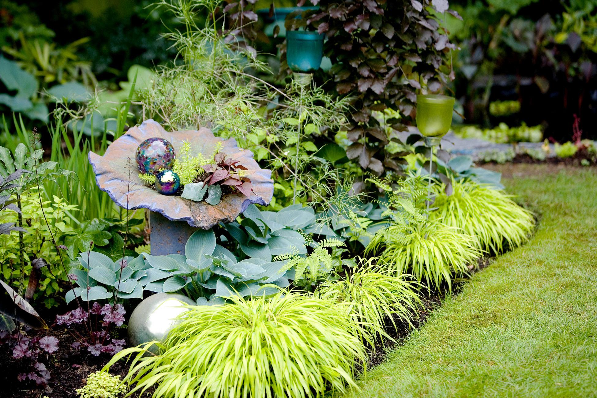 Poisonous Plants You Should Avoid in Your Garden (Part 1)